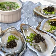 oystersiconW